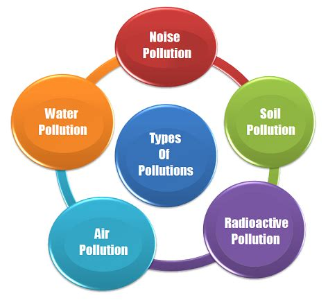 Article pollution essay